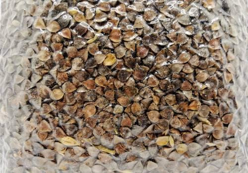 Grano saraceno non decurticato - Az Agr Elsa Bortolotti