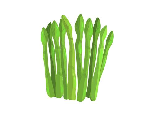 Asparagi Verdi - Az. Agr. Zanchi