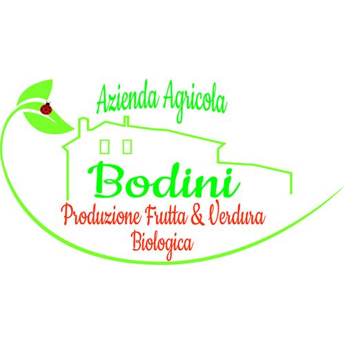bodini logo .png