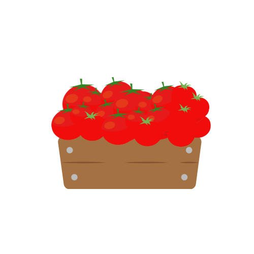 Cassetta di pomodori da conserva - Az. Agr. La Maldura