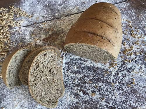 Pagnotta  di Cereali con Segale integrale  - Az. Agr. Brado e le Strie