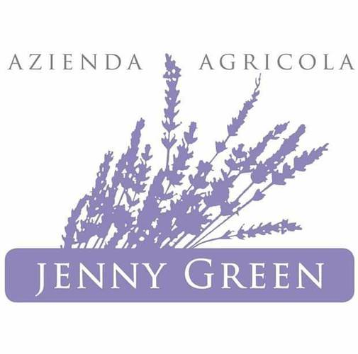 jenny logo.jpg