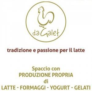 logo_dagalet-300x294.jpg