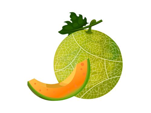 Melone - Az. Agr. Milani