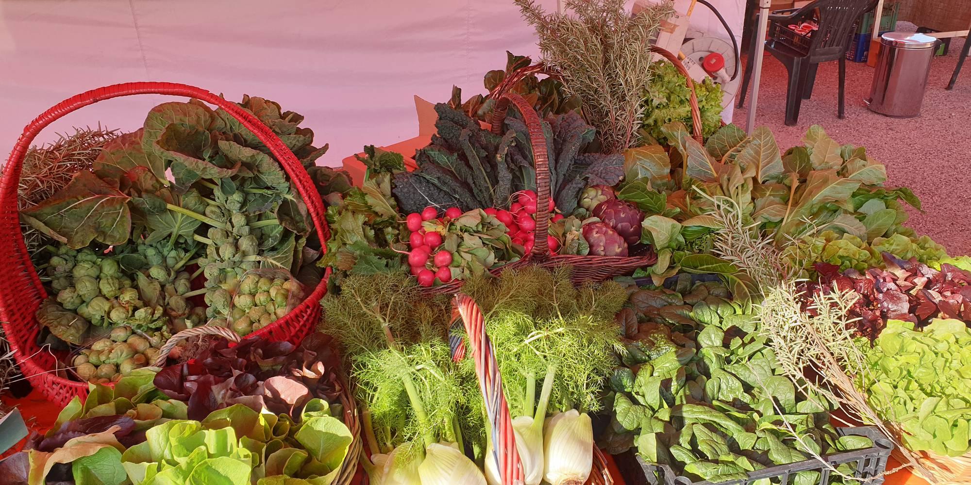 prodotti mercato borgochiesanuova (14).jpg